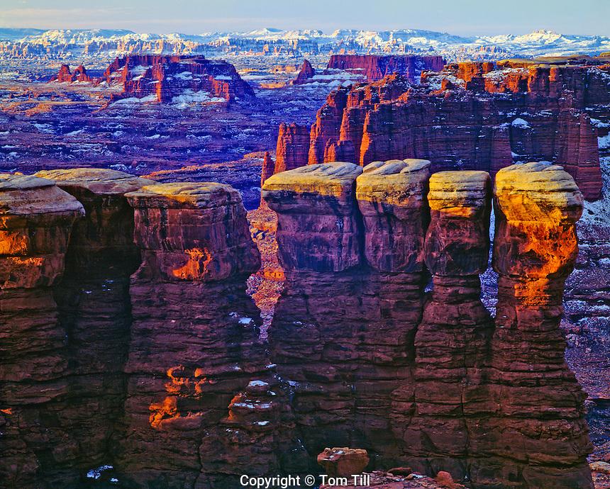 Monument Basin in winter, Canyonlands National Park, Utah  White Rim