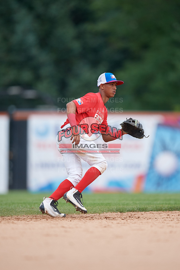 Fran Alduey (3) during the Dominican Prospect League Elite Underclass International Series, powered by Baseball Factory, on July 21, 2018 at Schaumburg Boomers Stadium in Schaumburg, Illinois.  (Mike Janes/Four Seam Images)