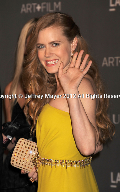 LOS ANGELES, CA - OCTOBER 27: Amy Adams arrives at LACMA Art + Film Gala at LACMA on October 27, 2012 in Los Angeles, California.