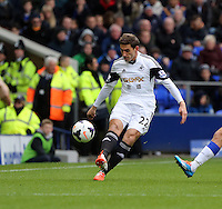 Pictured: Angel Rangel of Swansea. Saturday 22 March 2014<br /> Re: Barclay's Premier League, Everton v Swansea City FC at Goodison Park, Liverpool, UK.