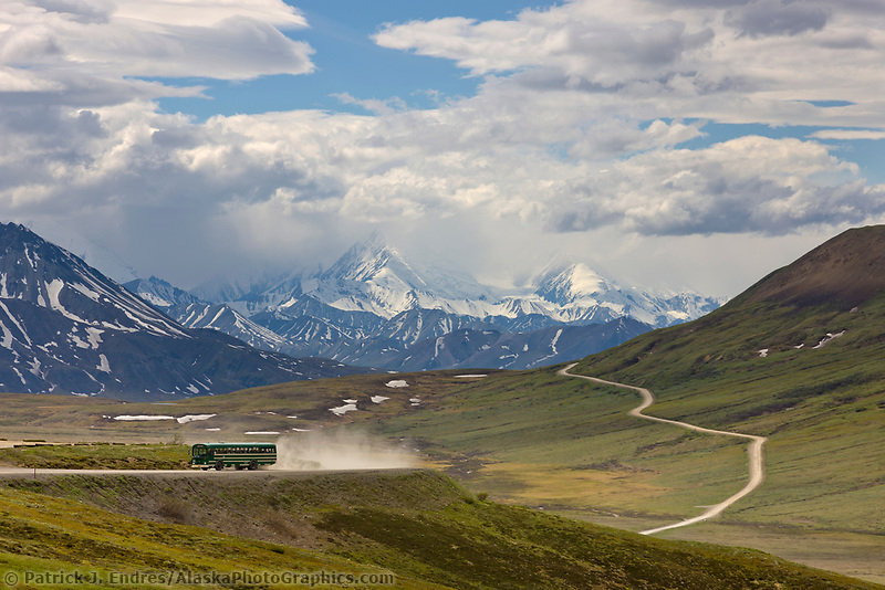 Tour bus travels along the Denali Park road at Stoney Dome, Denali National Park, Interior, Alaska.