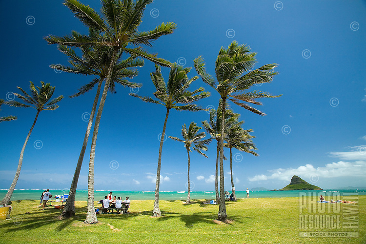 Beach park scene with Chinaman's Hat, Kualoa Regional Park, East Side of Oahu