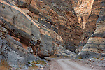 Road through the Titus Canyon narrows, Death Valley National Park, California