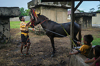 "March 25, 2016 - Wainyapu (Indonesia). John - a veteran of many Pasola - bradles his horse. He started participating in the Pasola when he was just 15 and he's now riding the ""Halato"", one of the two horses that are used to open the festival. Behind John, the tombs where the bodies of the ancestors of the villagers are buried. © Thomas Cristofoletti / Ruom"
