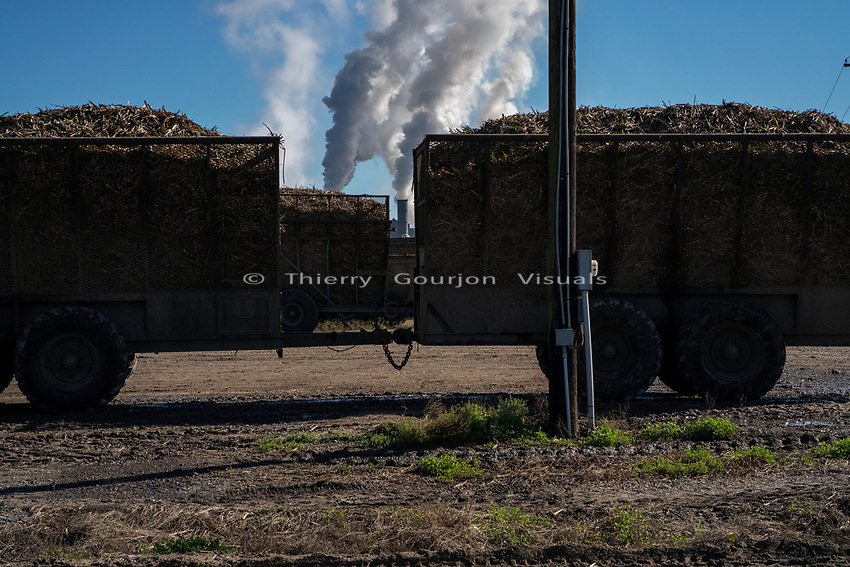 Sugar Cane Processing Plant<br />