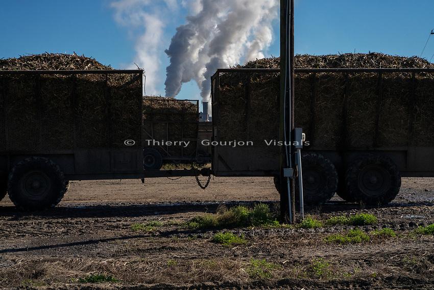 Sugar Cane Processing Plant<br /> Route 90<br /> Baldwin, Louisiana<br /> 01.05.2019<br /> Photo by Thierry Gourjon