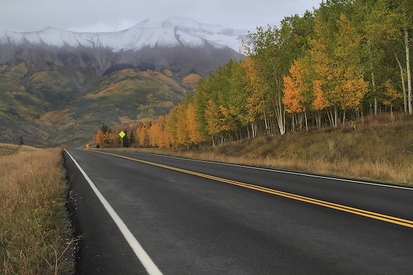 Highway in the San Juan Mountains near Telluride, Colorado, USA. John offers autumn photo tours throughout Colorado.