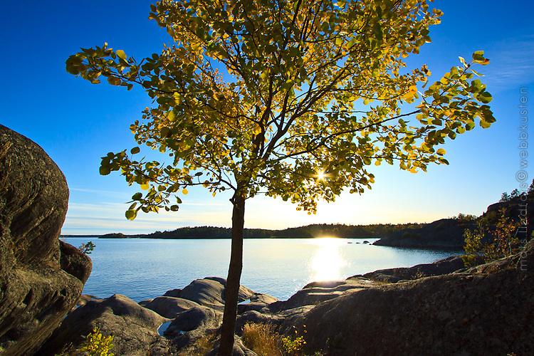 Bild: Landskap med höst vid havet i Stockholms skärgård Sverige / Photo: Seascape with autumn at the sea in Stockholm archipelago Sweden