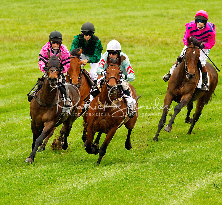 Horse racing charlotte nc
