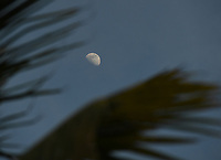 FORT LAUDERDALE, FL - JUNE 29: A general view of the Moon on Deerfield Beach as South Florida beaches are to close for July Fourth weekend, Florida reports another record spike in coronavirus cases, Florida's Covid-19 surge shows the state's reopening plan is not working on June 29, 2020 in Deerfield Beach, Florida. Credit: mpi04/MediaPunch