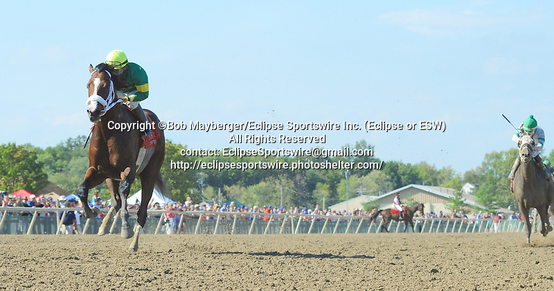 Encryption (no. 7), ridden by Paco Lopez and trained by Kelly Breen, wins the Bayern Stakes for three year olds and upward on September 19, 2015 at Parx Racing in Bensalem, Pennsylvania.  (Bob Mayberger/Eclipse Sportswire)