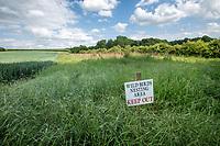 Conservation area for gound nesting birds - Norfolk, June