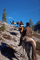 Riding the high trail on packtrip in Banff National Park, Canadian Rockies, Alberta, Canada