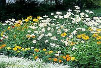 HS47-015b  Flower Garden