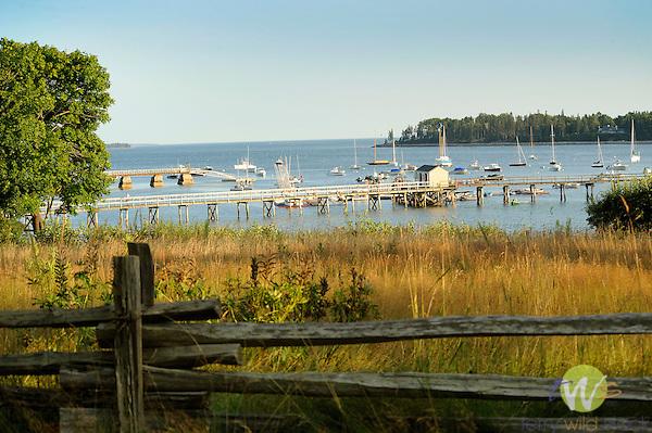 Northeast Harbor, Somes Sound, Acadia, ME.