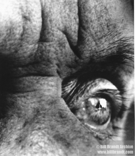 Max Ernst's eye