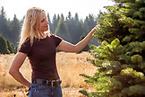 USA, Oregon, Corbett, Trout Creek Tree Farm, owner Terri Barnes on her 80 acre Noble fir Christmas tree farm which is nestled in the foothills near Mt. Hood