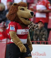 The Lions mascot during the Super Rugby quarter-final match between the Emirates Lions and the Jaguares at the Emirates Airlines Park Stadium,Johannesburg, South Africa on Saturday, 21 July 2018. Photo: Steve Haag / stevehaagsports.com