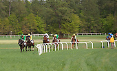 Black Jack Blues, in the green, and Country Cousin draw away from the Carolina Cup field approaching the last.