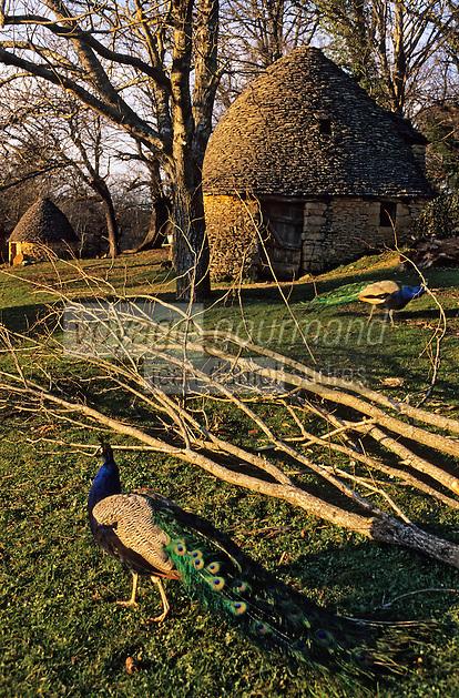 Europe/France/Aquitaine/24/Dordogne/Vallée de la Dordogne/Périgord/Périgord Noir/Env de Sarlat-la-Canéda/Saint-André-d'Allas: Les cabanes du Breuil au toits de lauze (ou lause)