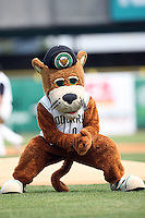 April 11 2010: Kane County Cougars Mascot at Elfstrom Stadium in Geneva, IL. The Cougars are the Low A affiliate of the Oakland A's. Photo by: Chris Proctor/Four Seam Images