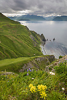 Overlooking UnAlaska Bay from Amaknak Island, Dutch Harbor, Aleutian Islands, Alaska