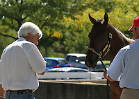 Hip #131 Distorted Humor - Mushka colt being inspected by trainer Bob Baffert at the  Keeneland September Yearling Sale.  September 9, 2012.