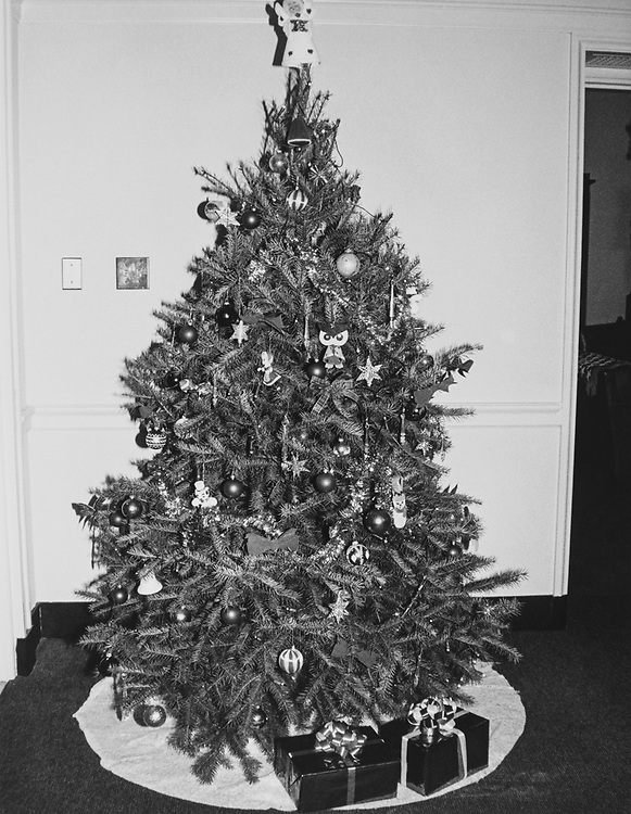 Decorated Christmas tree during Christmas contest in 1983. (Photo by CQ Roll Call via Getty Images)