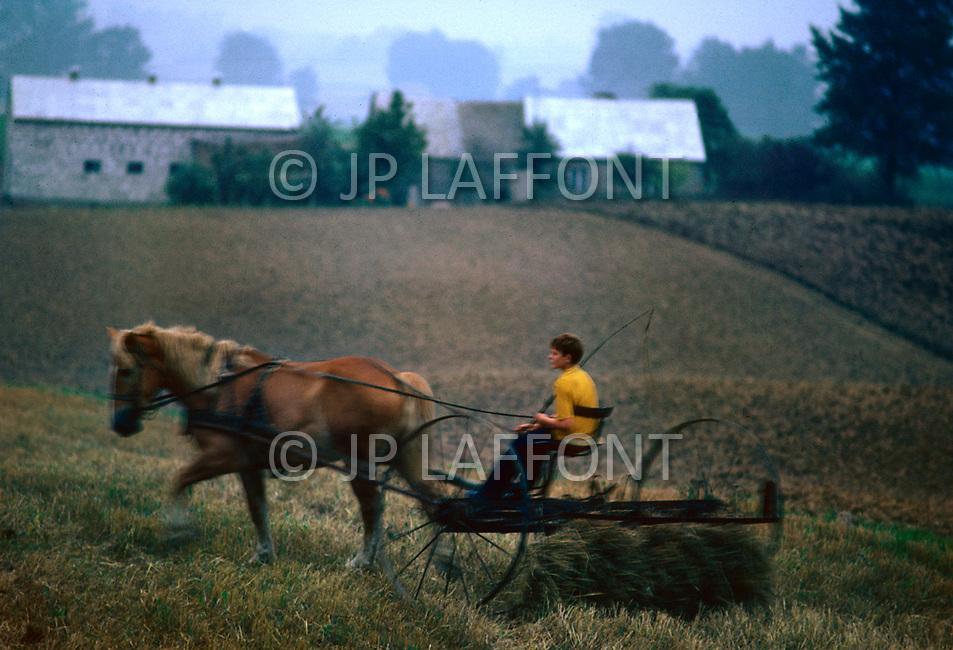 Poland, September, 1981 - Farmers in Trabki Wielkit region gather potatoes. Many crops grow well in the rich soil of Poland, however the Poles rarely enjoy a bountiful harvest. The USSR appropriates most of the crops and send them to other areas, leaving only meager rations behind for Polish farmers.<br /> Pologne, septembre 1981 &ndash; Les fermiers de la r&eacute;gion de Trabki Wielkit r&eacute;coltent leur pommes de terre. Les r&eacute;coltes sont g&eacute;n&eacute;reuses, le sol polonais est fertile et le climat cl&eacute;ment. Mais l&rsquo;URSS redirige ces biens vers d&rsquo;autres directions ne laissant que de maigres stocks &agrave; la population locale. M&ecirc;me chose pour le lait et la viande.