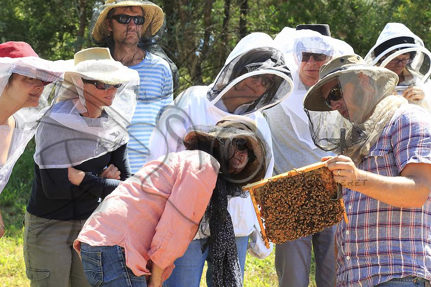 54 In Bathurst, Tim Malfroy's team during a weekend of courses in natural apiculture with the Warré type of hives. This type of hive requires very little intervention on the beekeeper's part. Simple and easy, this technique is ideal for urban beekeepers and has been enthusiastically received in the permaculture milieu in fashion on the east coast.///À Bathurst, l'équipe de Tim Malfroy pendant un week-end de formation à l'apiculture naturelle avec les ruches de type warré. Ce type de ruche demande très peu d'intervention de la part de l'apiculteur. Simple, facile, cette technique est idéale pour les apiculteurs urbains et connaît un engouement certain dans le milieu de la permaculture à la mode sur la côte Est.
