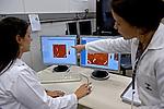 Teste de DNA no Laboratório do Inmetro. Rio de Janeiro. 2010. Foto de Luciana Whitaker..