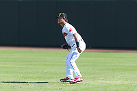 Glendale Desert Dogs right fielder Connor Marabell (4), of the Cleveland Indians organization, during an Arizona Fall League game against the Scottsdale Scorpions at Camelback Ranch on October 16, 2018 in Glendale, Arizona. Scottsdale defeated Glendale 6-1. (Zachary Lucy/Four Seam Images)