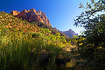 Zion and Red Rock Canyon
