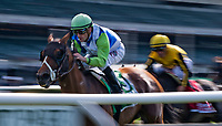 ELMONT, NY - JUNE 09: Hawksmoor # 5, ridden by Julien R. Leparoux, wins the New York during Friday racing at the Belmont Stakes Racing Festival at Belmont Park on June 9, 2017 in Elmont, New York (Photo by Scott Serio/Eclipse Sportswire/Getty Images)