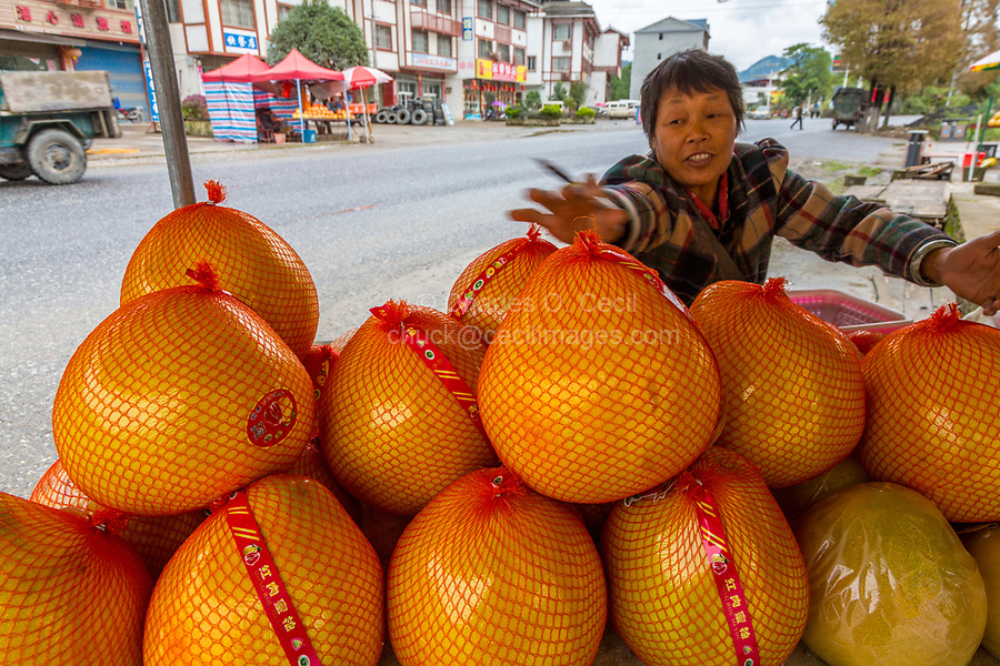 Guangxi, China.  Between Yangshuo and Longji.  Pomelos for sale at Roadside Rest Stop.