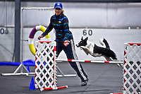 Biathlon Standard