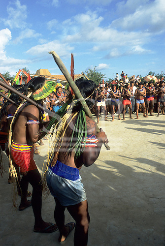 Altamira, Brazil. Kayapo Indians in a war dance with borduna clubs wearing feather headdresses.