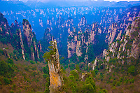 Towers  and  rock pinnacles in Emperor Mountain Reserve.People's Republic of China.Wulingyuan National Park UNESCO WHS.Rock formations of  quartz-sandstone