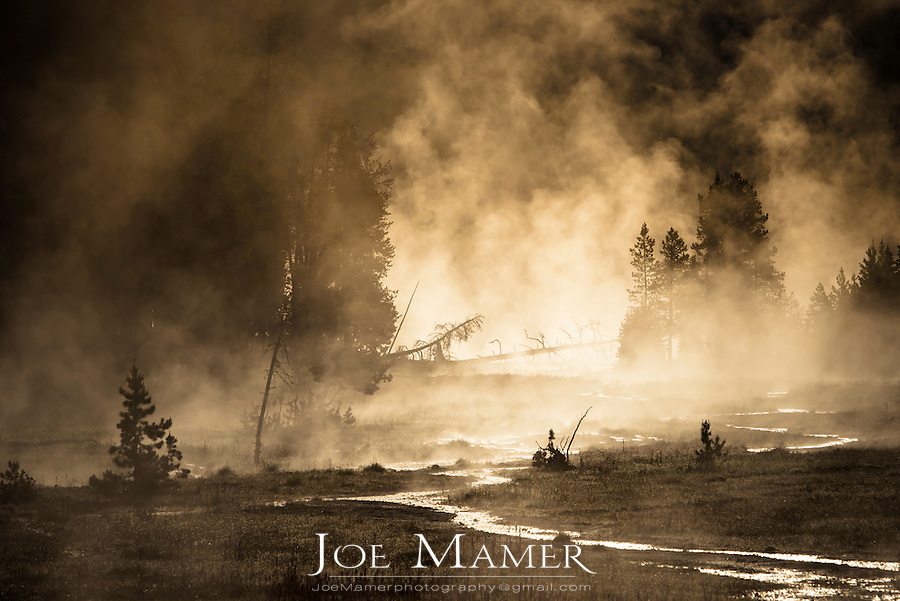 Steam rises from Tangled Creek in Yellowstone National Park.