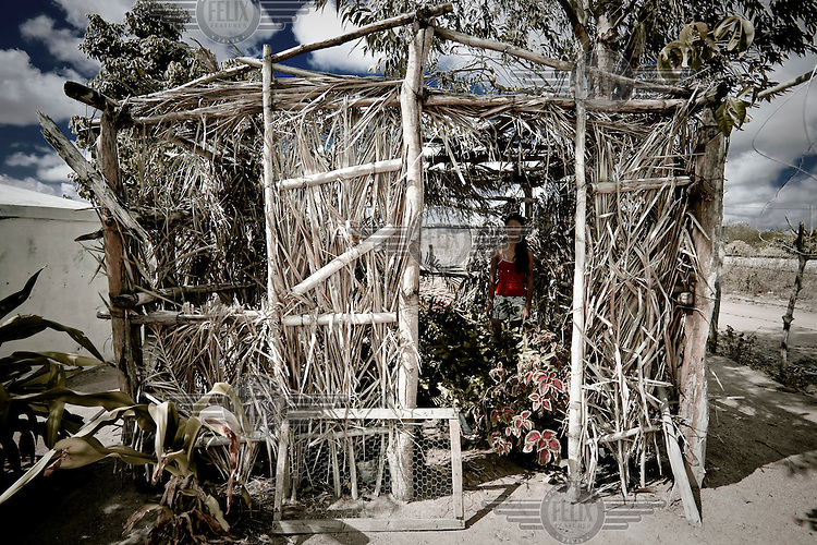 A young farmer stands in her greenhouse made of dried palm leaves to protect her plants from the desert's hot weather..
