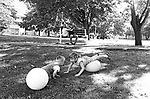 Children playing on Denton Green, in Hempstead, NY in May, 1968. Photo by Jim Peppler. Copyright/Jim Peppler/1968.