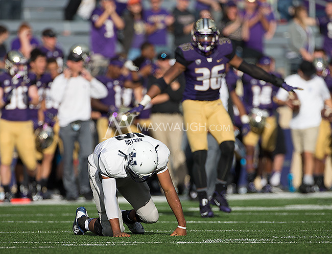 Chuckie Keeton struggles to rise as Azeem Victor celebrates a game-clinching defensive stop.  The Huskies won 31-17.