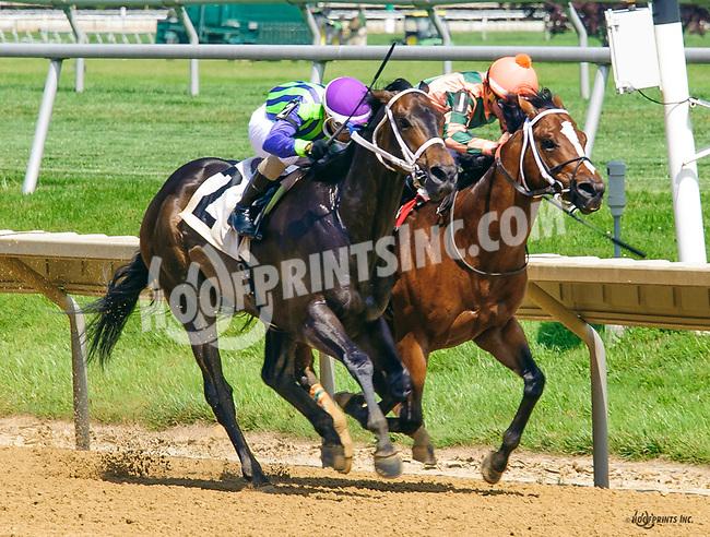 Uplifting winning at Delaware Park on 6/15/17