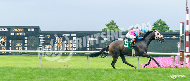 Ruby's Mine winning at Delaware Park on 7/13/16