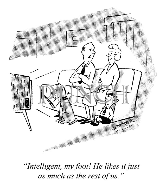 """""""Intelligent, my foot! He likes it just as much as the rest of us."""""""