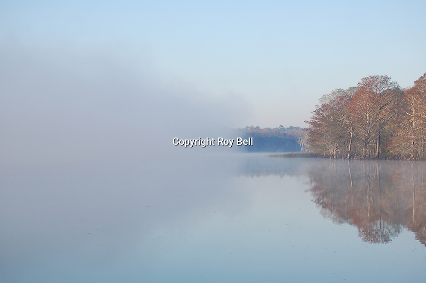 Fog creeping across the Intercoastal Waterway near Appalatchicola Florida leaving trees reflected in the water on the other side.