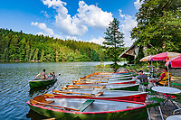 Deutschland, Bayern, Niederbayern, Naturpark Bayerischer Wald, bei Viechtach: Hoellensteinstausee mit Bootsvermietung | Germany, Bavaria, Lower-Bavaria, Nature Park Bavarian Forest, near Viechtach: reservoir Hoellenstein Lake with boat rental station
