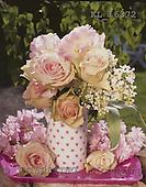 Interlitho, Alberto, FLOWERS, photos, light roses, vase, KL16372,#f# Blumen, Natur, flores, naturaleza