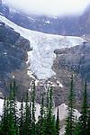 N.A., Canada, Alberta, Jasper NP, Angel Glacier