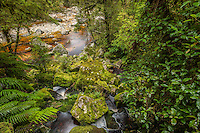 Oparara River, Buller District, West Coast, New Zealand - stock photo, canvas, fine art print